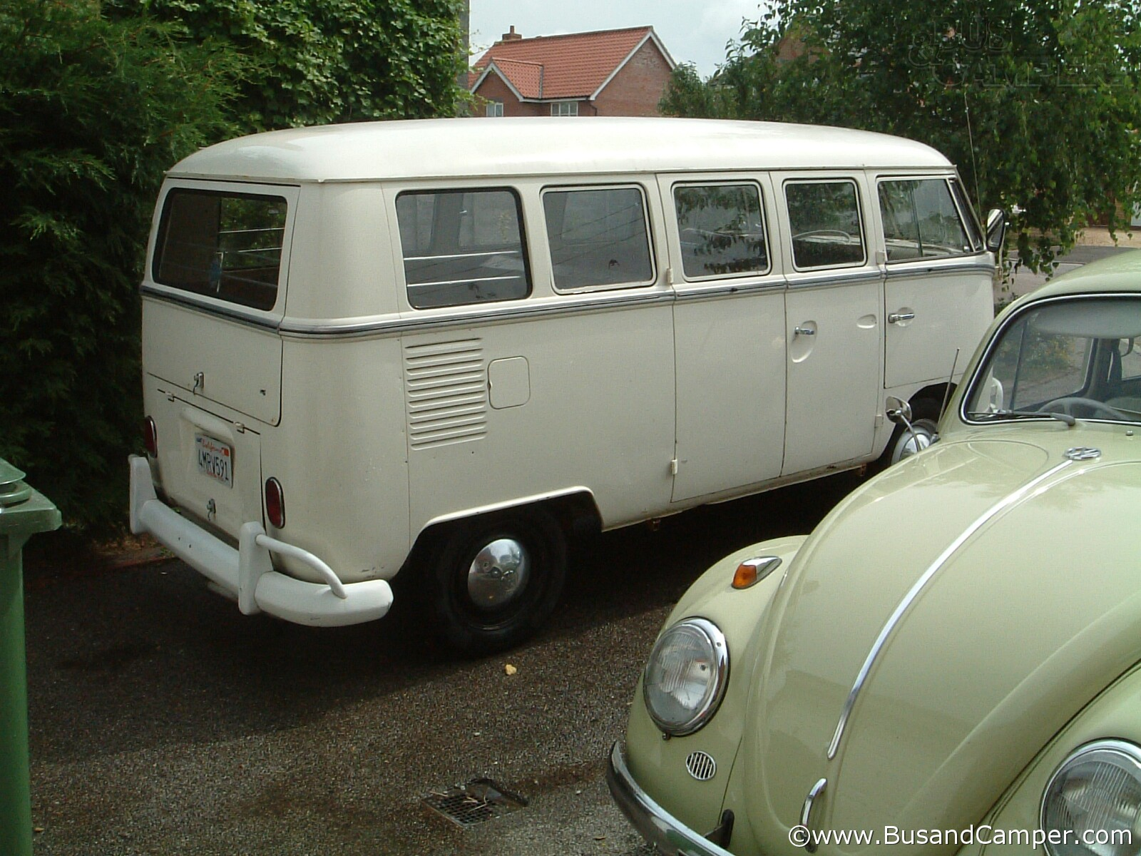 Beryl Green Bug and Lotus Bus