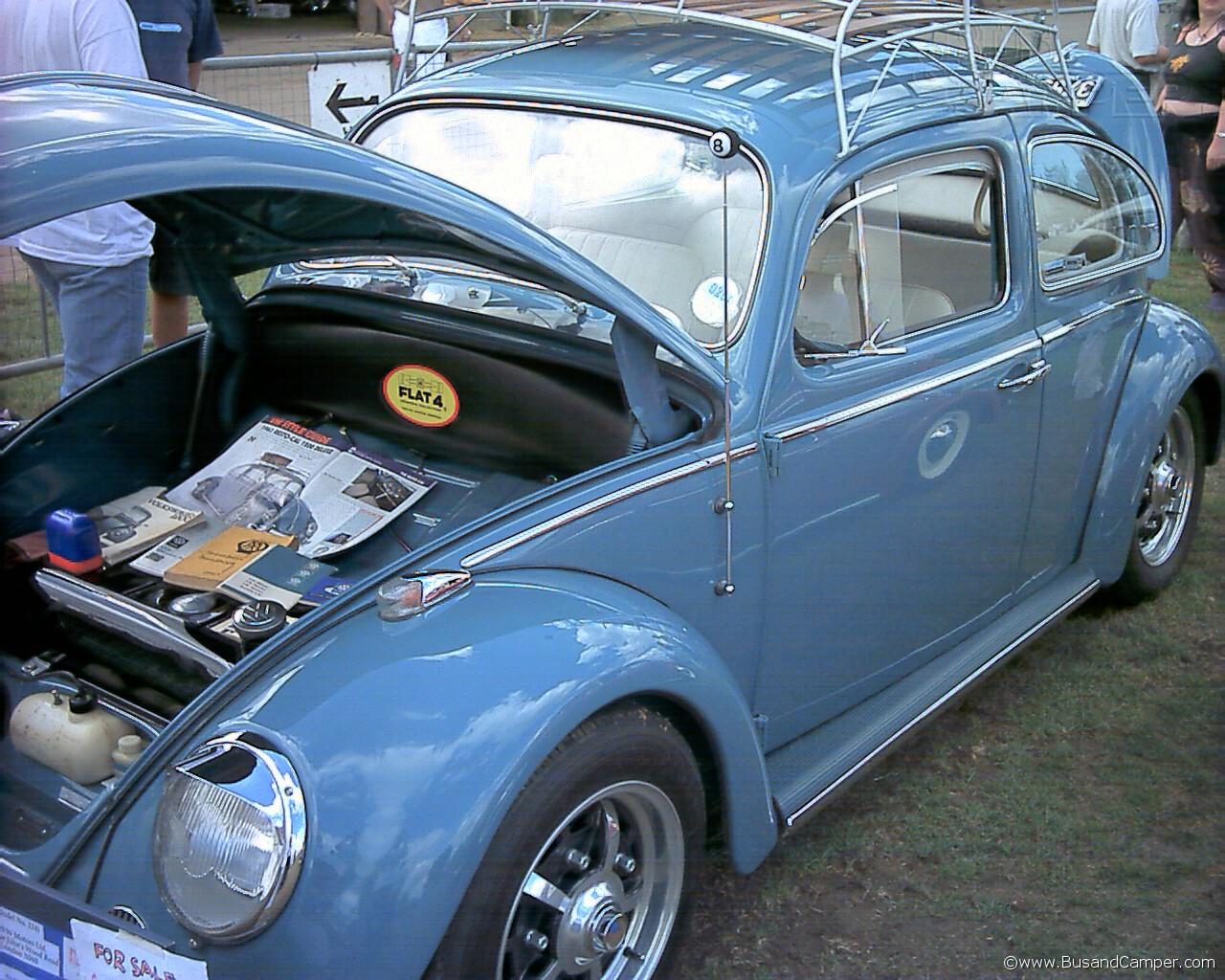 sprinstars on a beetle