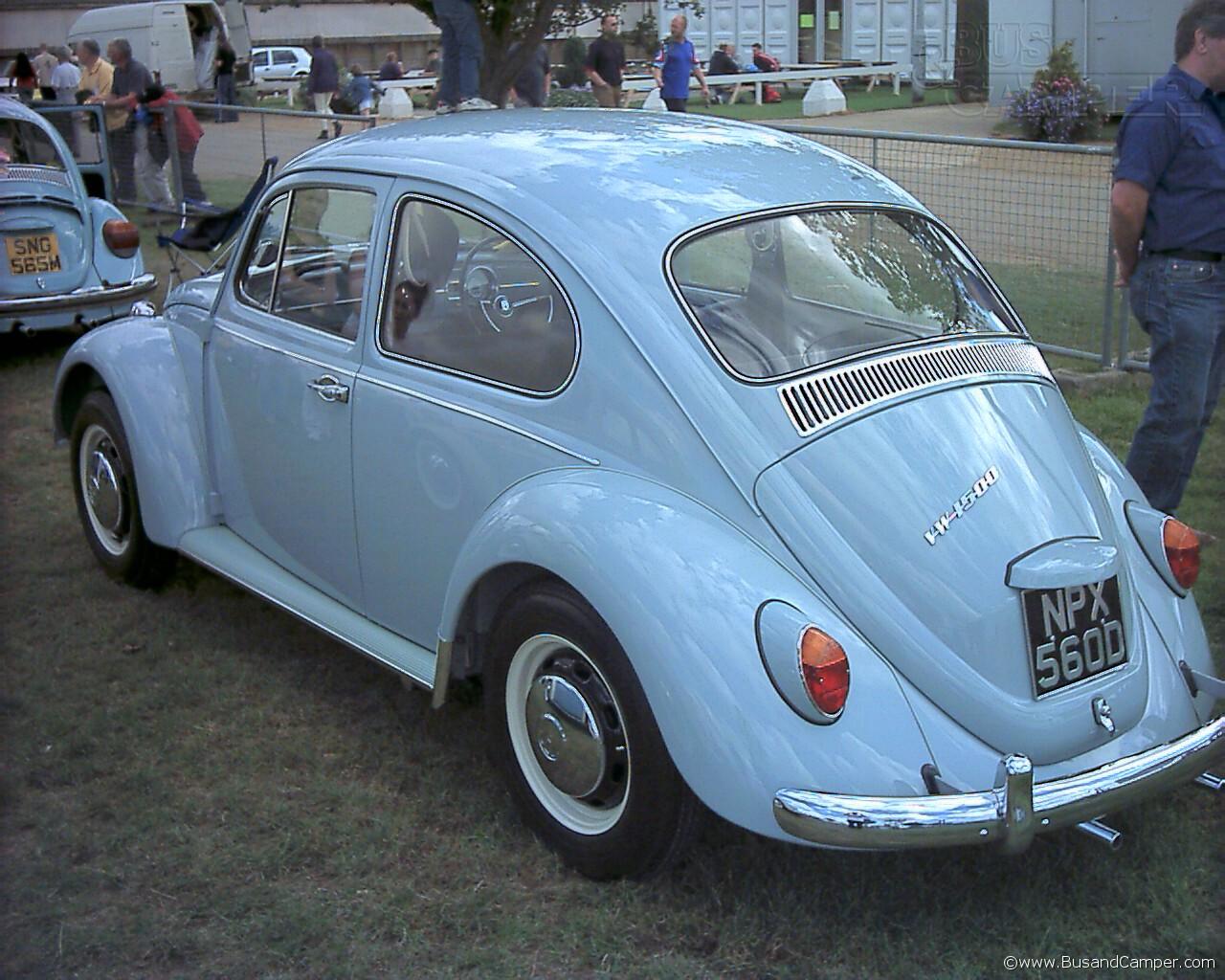 66 beetle