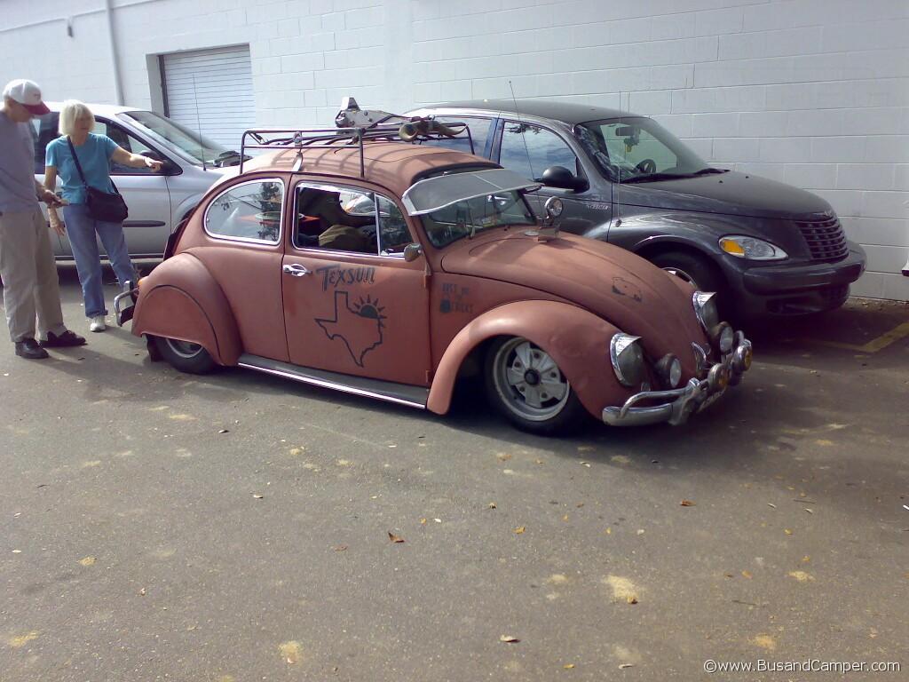 fumagalli Beetle