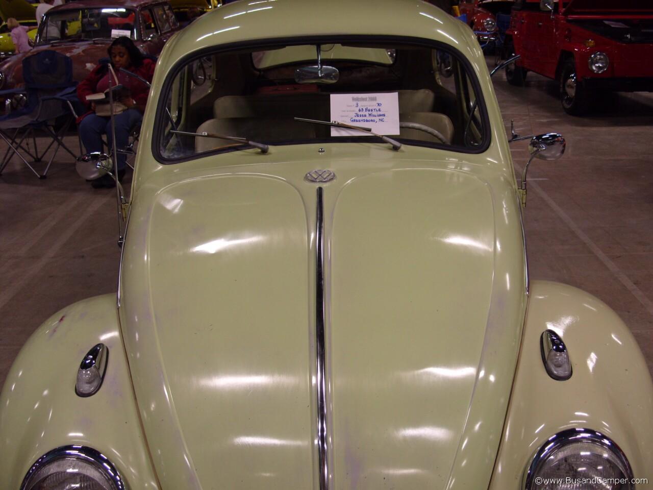 beryl green bug