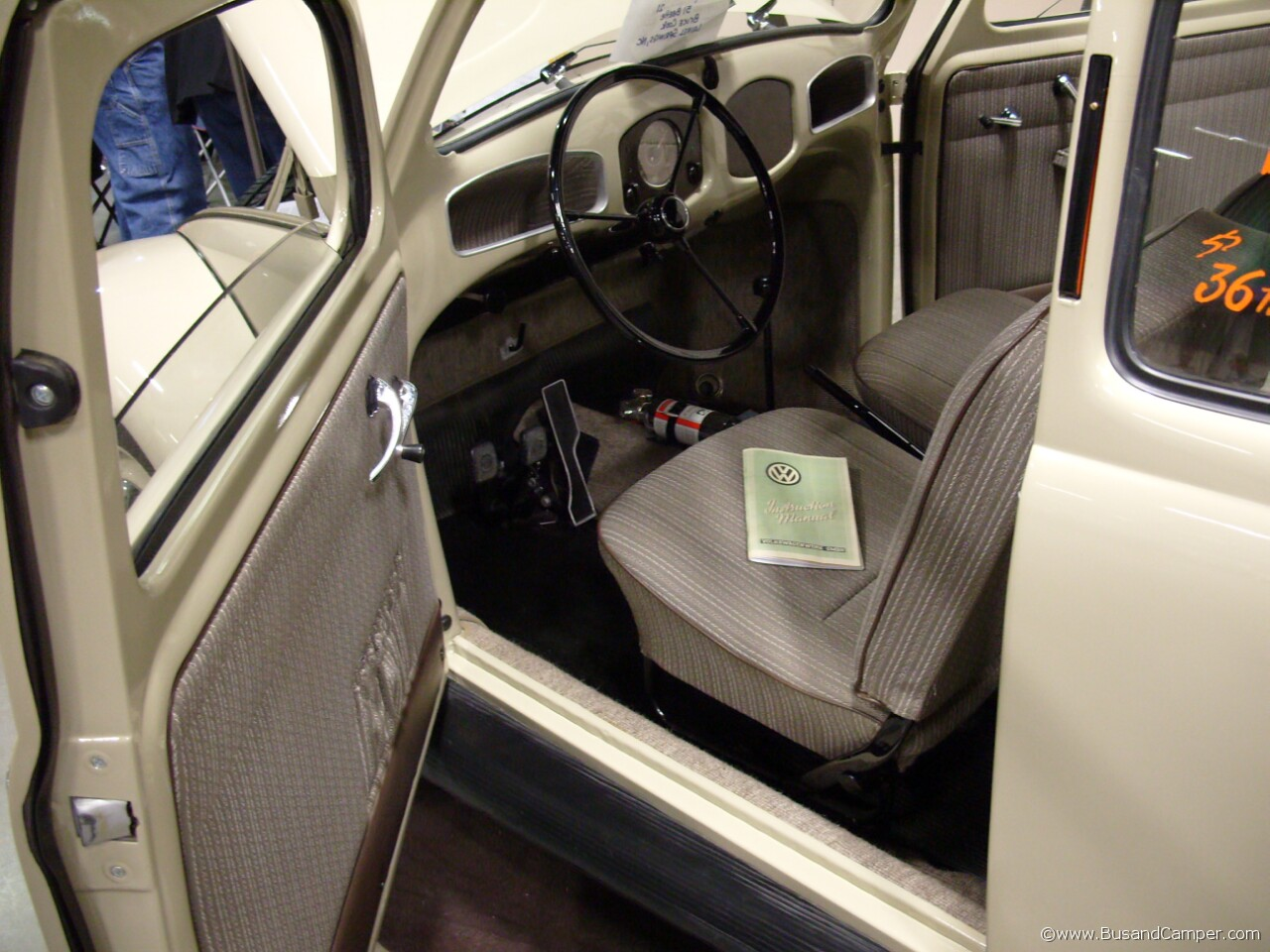 early beetle interior