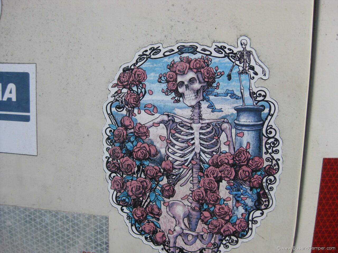 Dead Roses 15