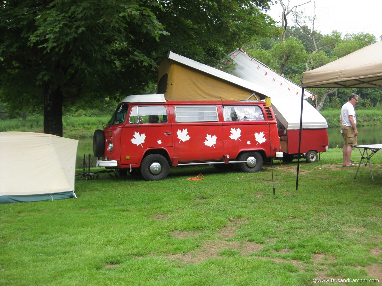 Red Canadian Westy